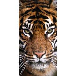 Tigris pamut torolkozo 70x140 cm